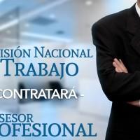 TÉRMINOS DE REFERENCIA PROFESIONAL PARA ASESORAR LA CNT-EITI GUATEMALA